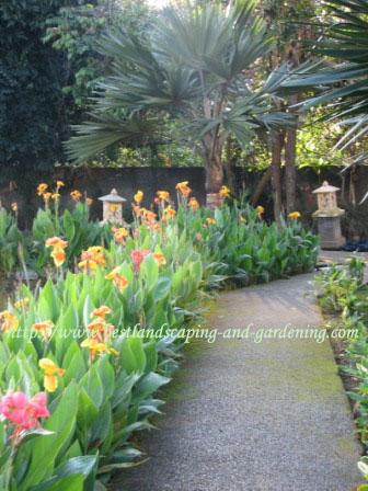Taman Rumah Yang Indah Dan Sehat Rumahku